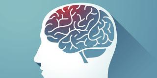 Phải làm gì để não bộ không bị lão hoá sớm?