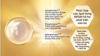 MFGM là chất gì