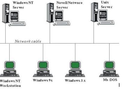 Một mô hình liên kết các máy tính trong mạng